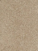 Flooring On Sale Carpet Hardwood Laminate Vinyl Tile